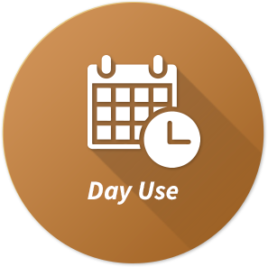 Icon day use